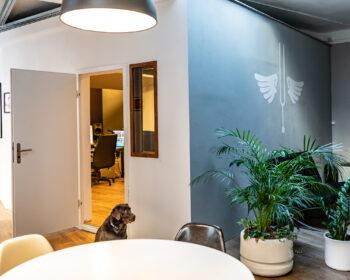 """Tonstudio Audioflair Bern. Eingangsbereich mit Sicht auf Regie und Studiohund Labrador """"Ronja""""."""