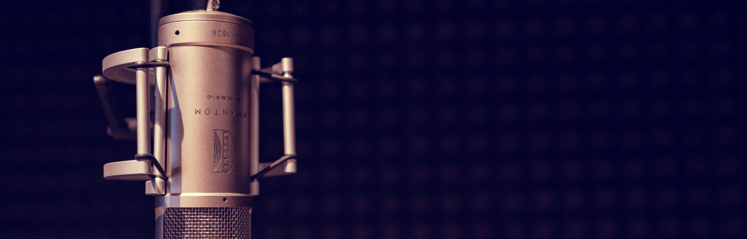 Mikrofon Brauner Aufnahmekabine